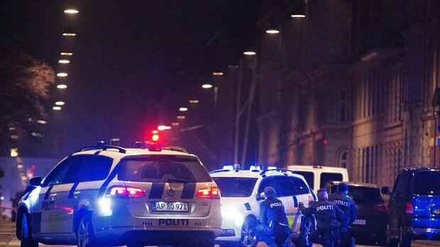 Politie Kopenhagen schiet man dood