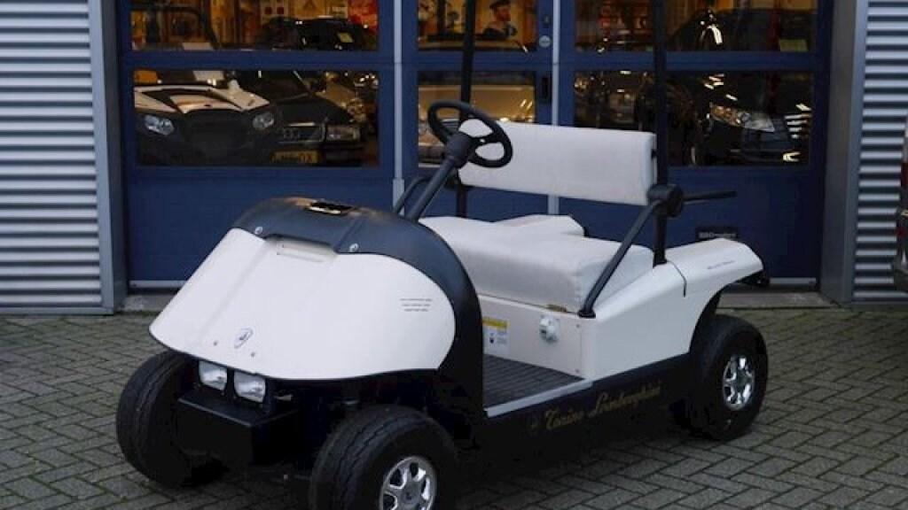 Een elektrische Lamborghini is ook een optie. Voor nog geen 5.000 euro.