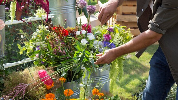 Bloomon wil met nieuwe bloemenlijn verrassen