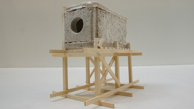 Wonen we straks in huizen gemaakt van schimmels? Deze ontwerpers denken van wel