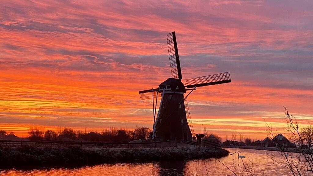 De opkomst in Haastrecht, Zuid-Holland.