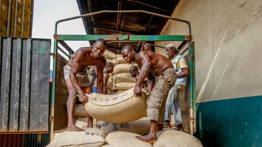 Cacao op transport in Ivoorkust
