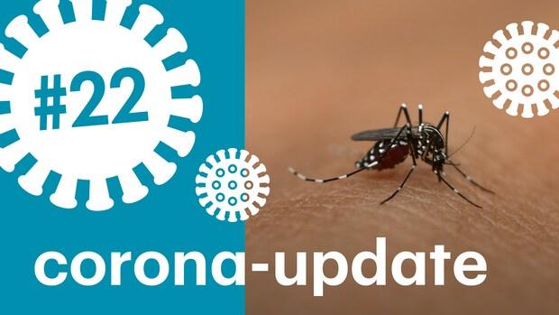 Kunnen muggen het coronavirus verspreiden?