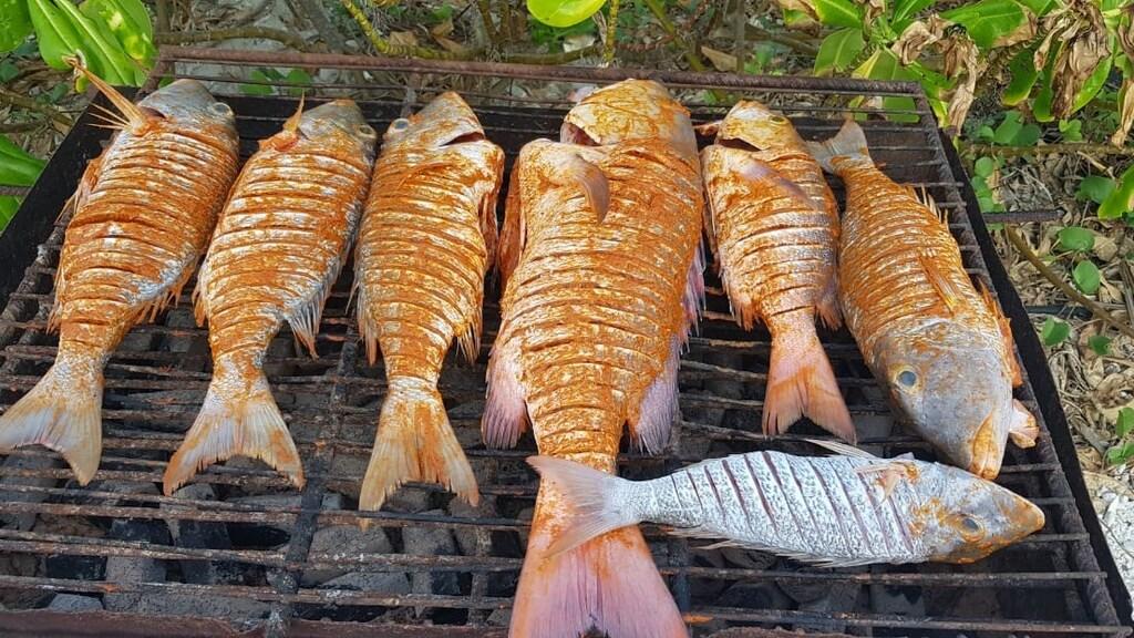 Er is genoeg vis voor op de bbq.