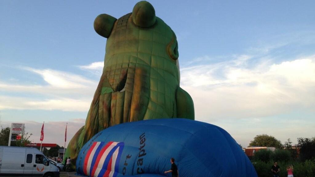 Een kikker landde naast de ballon van Witteveen