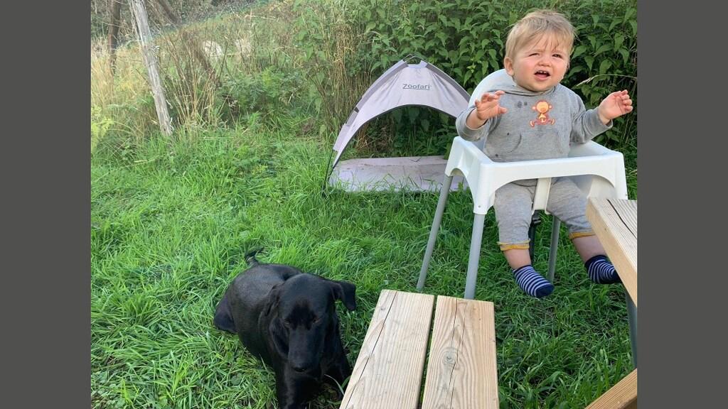 De boerderijhond mocht bij Dennis en zijn jongste zoontje Theo aan tafel zitten.