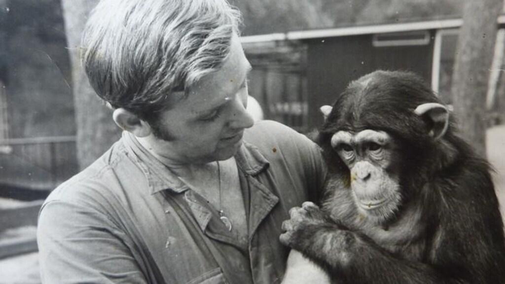 Marjo Hoedemaker met de jonge chimpansee Mike