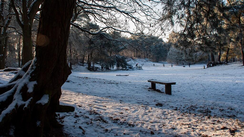 Voorbeeld van een sneeuwfoto met automatische instellingen: de sneeuw is grijs en er ligt een blauwe gloed over de foto