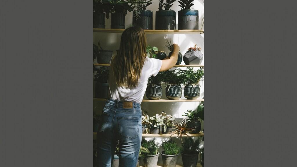Ilse verkoopt tweedehands planten in haar winkel.