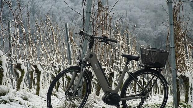 Diefstal e-bikes neemt fors toe: 'Georganiseerde bendes'