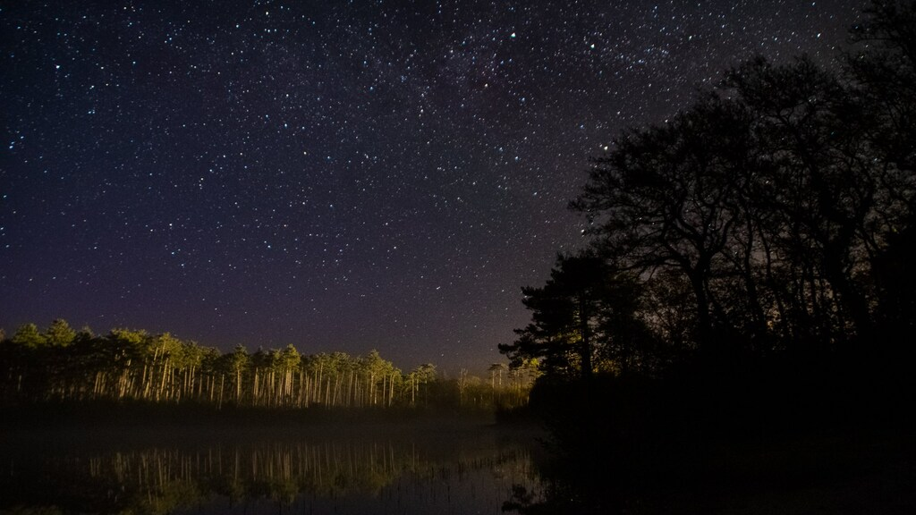 Ook Jacoba de Graaf stuurde een foto van het noorderlicht naar Buienradar.