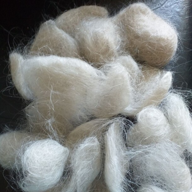 De haren die Jolanda Lievens in twee weken tijd kwijtraakte.