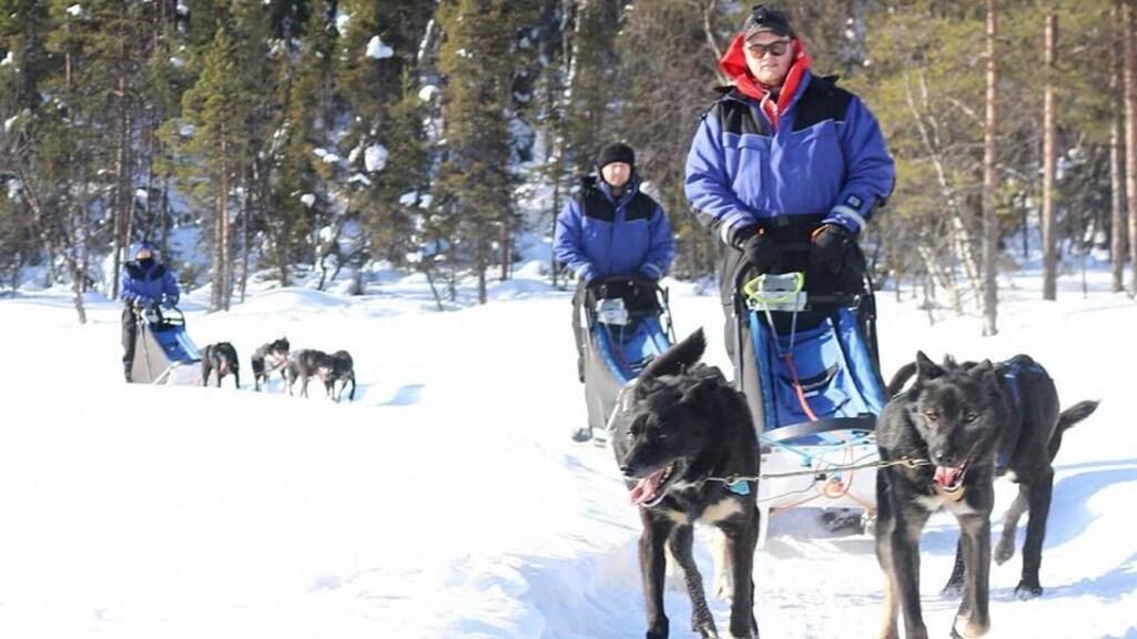 Michiel ging drie dagen op pad met husky's.
