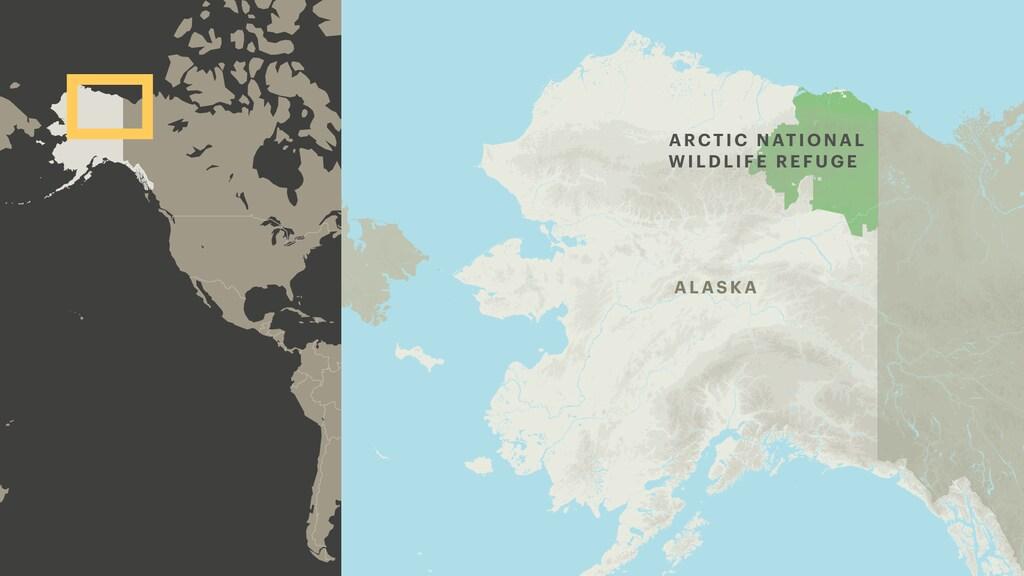 Het natuurgebied ligt in het noordoosten van Alaska.