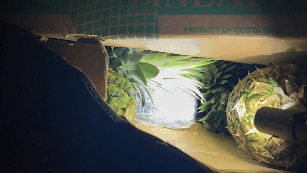 Drugs verstopt bij ananassen, bewijs verstuurd via Anom.