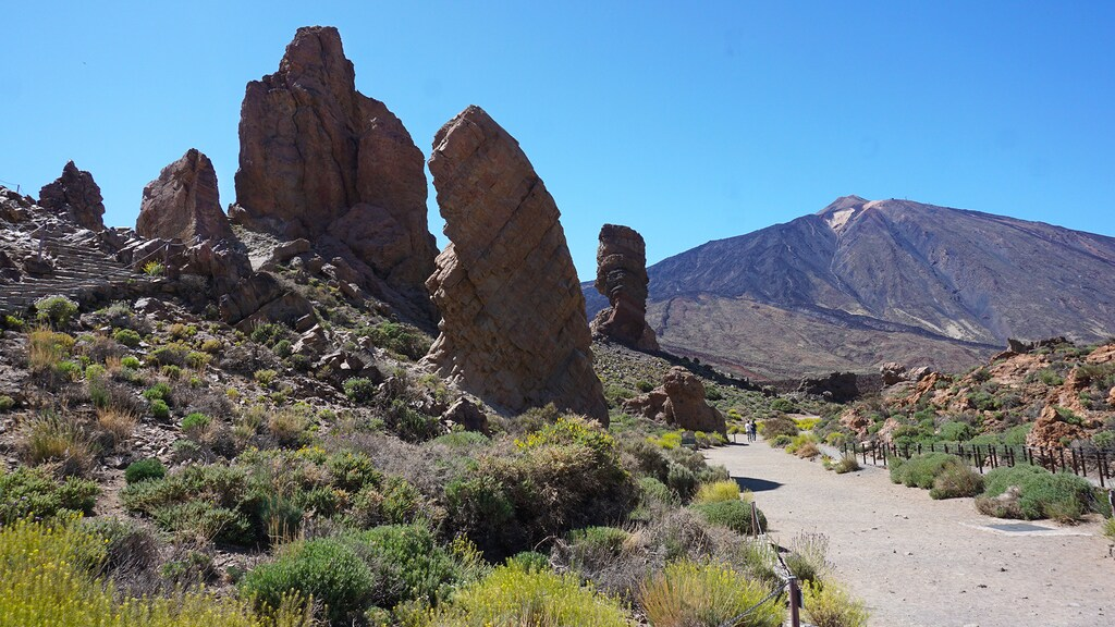Wandelen in Nationaal Park El Teide.