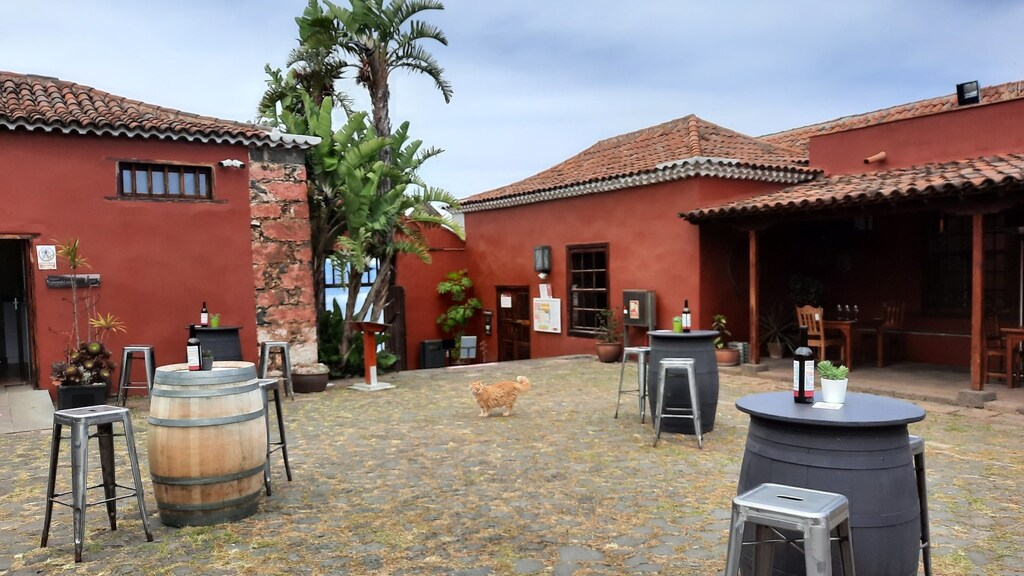 Proef wijnen van het eiland bij Casa del Vino.