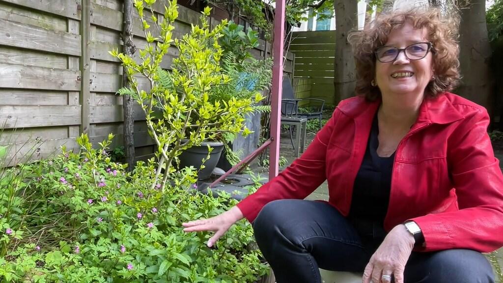 Marja werkt nog steeds graag in de tuin