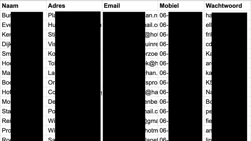 Een voorbeeld van de gestolen data.