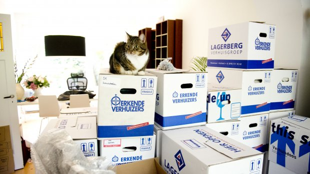 'Woningmarkt groeit veel sneller dan verwacht'