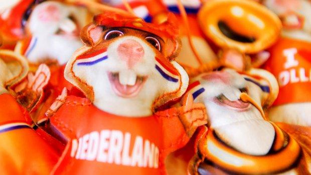 Droombaan: de volgende Hamster-actie bedenken voor Albert Heijn