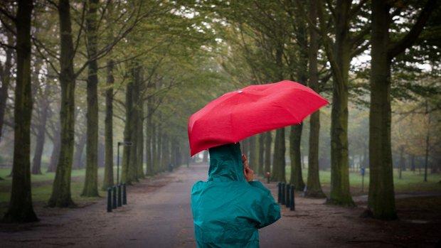 Dit doet klimaatverandering met Nederland
