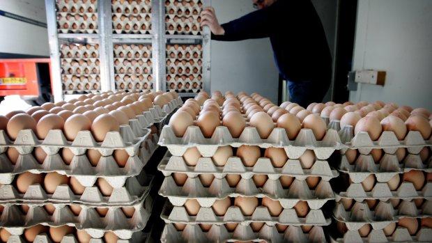 'Geen zorgen over de eieren, er gebeurt echt niets'