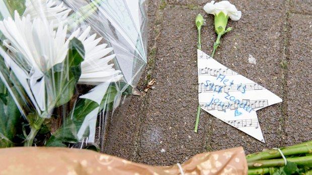 Dader steekpartij Zwolle blijft vastzitten