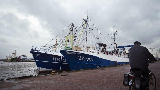Wetenschappers willen visverbod in groot deel Noordzee