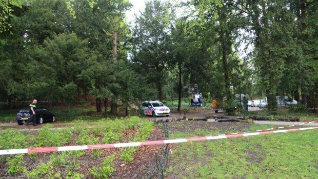 Foto's: bliksemdrama in park Amersfoort