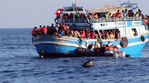 50 dode vluchtelingen in scheepsruim