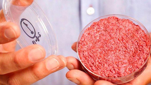 Petitie: sta eten kweekvlees in Nederland toe