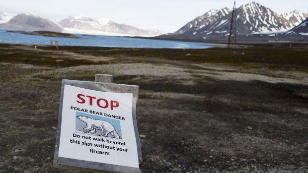 Zo reis je eco-vriendelijk naar de Noordpool