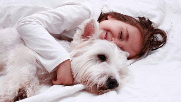 Soms is onze liefde voor huisdieren te groot: 'Een hond hoort niet in bed'