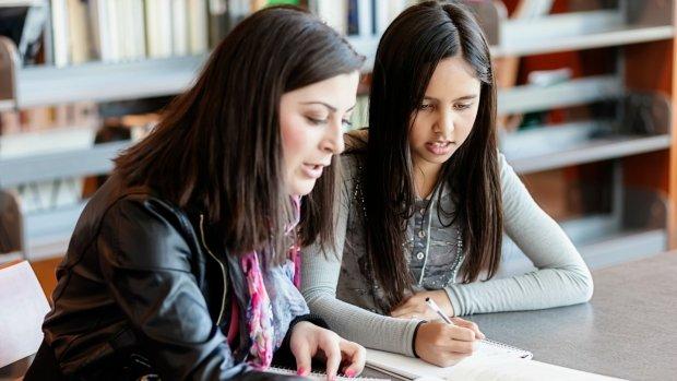 Haags bijlesbedrijf lekt ID-kaarten en diploma's 180 studenten