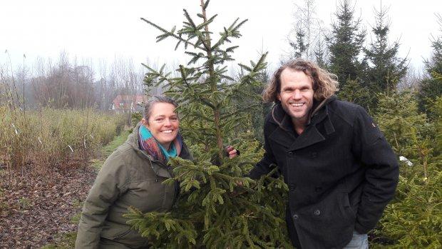 De ultieme kerstgedachte: adopteer een kerstboom