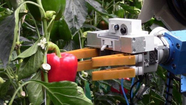 Is Robocop de boer van de toekomst?