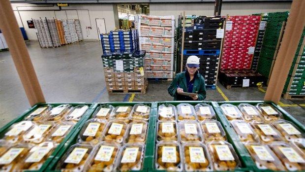 Italië importeert gretig uit Nederland