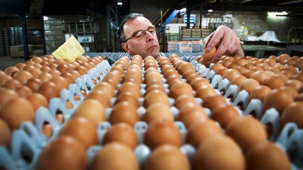 Fipronilcrisis: ellende voor boeren, kassa voor deze bedrijven
