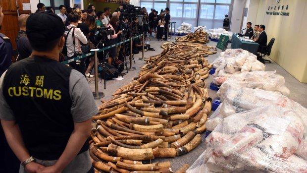 China stopt met legale handel van ivoor