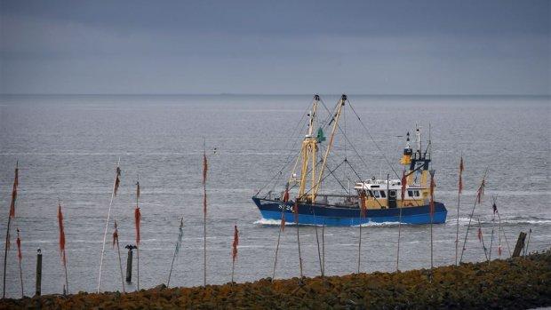 EU-parlement stemt voor verbod pulsvisserij