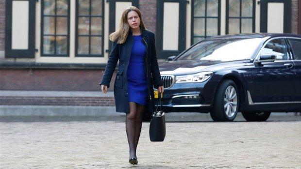 Minister Schouten wil verbod op pulsvissen aanvechten bij rechter