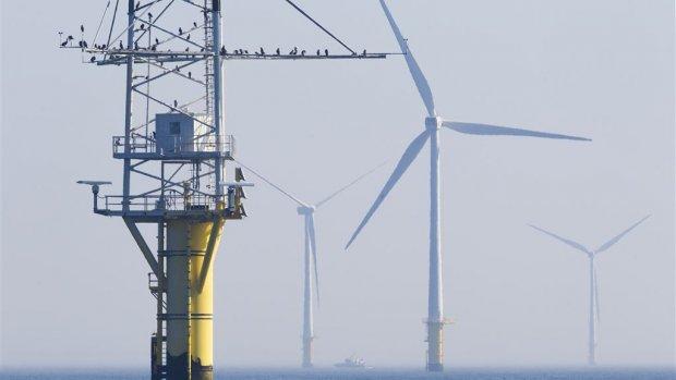 Kabinet zet verder in op windenergie op zee