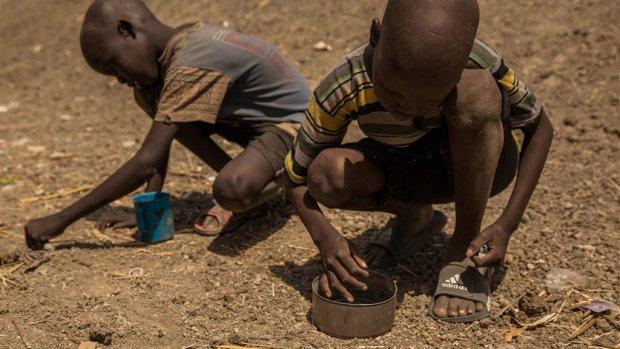Ziekte in Soedan door eten gras en onkruid