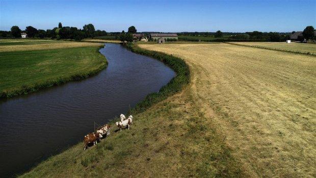 'Nederlandse delta moet zich beter wapenen tegen droogte'