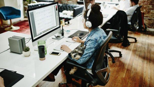 Wel mailen, niet praten: kantoortuin maakt ons lomp