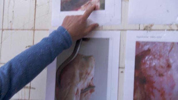 Slachter: 'Het vlees dat in de supermarkt ligt, vertrouw ik niet'