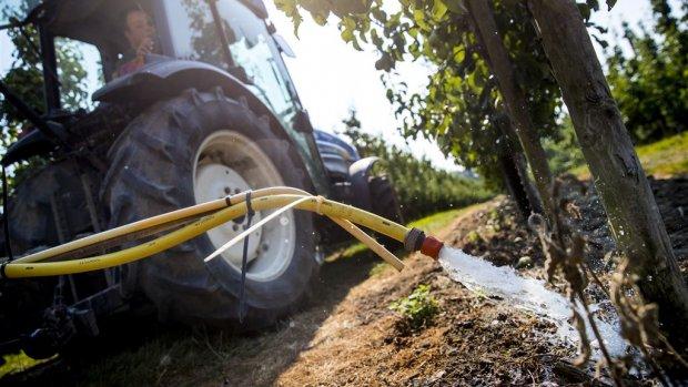 Rabobank-topman Draijer: droogte kost boeren 30 procent omzet