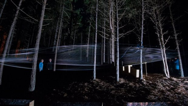 Techkunst in een donker bos op Vlieland