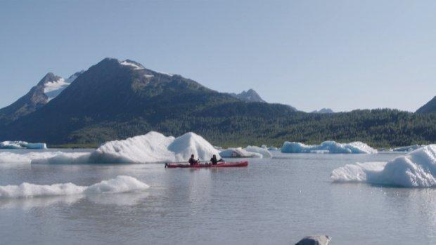 Wat is er aan de hand in Alaska? 'Zo weinig vis'